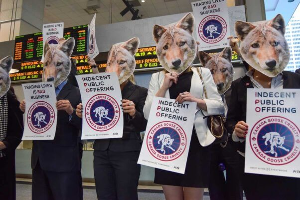 Activists in coyote masks hold signs protesting Canada Goose at its IPO in Toronto