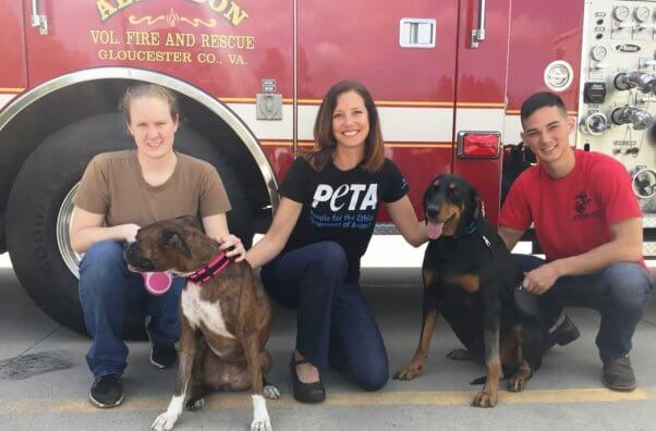 Compassionate Fire Dept Award given to Aingdon Fire Dept. for rescuing two dogs