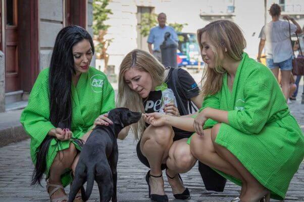 lettuce ladies cuba trip: black dog gets treats