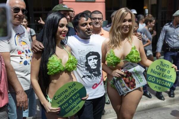 lettuce ladies cuba trip: passing out leaflets