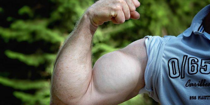 Shake Well: 4 New Ready-to-Enjoy Vegan Protein Drinks