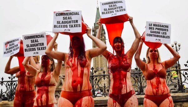 Protesters pour buckets of fake blood over their heads in Ottawa