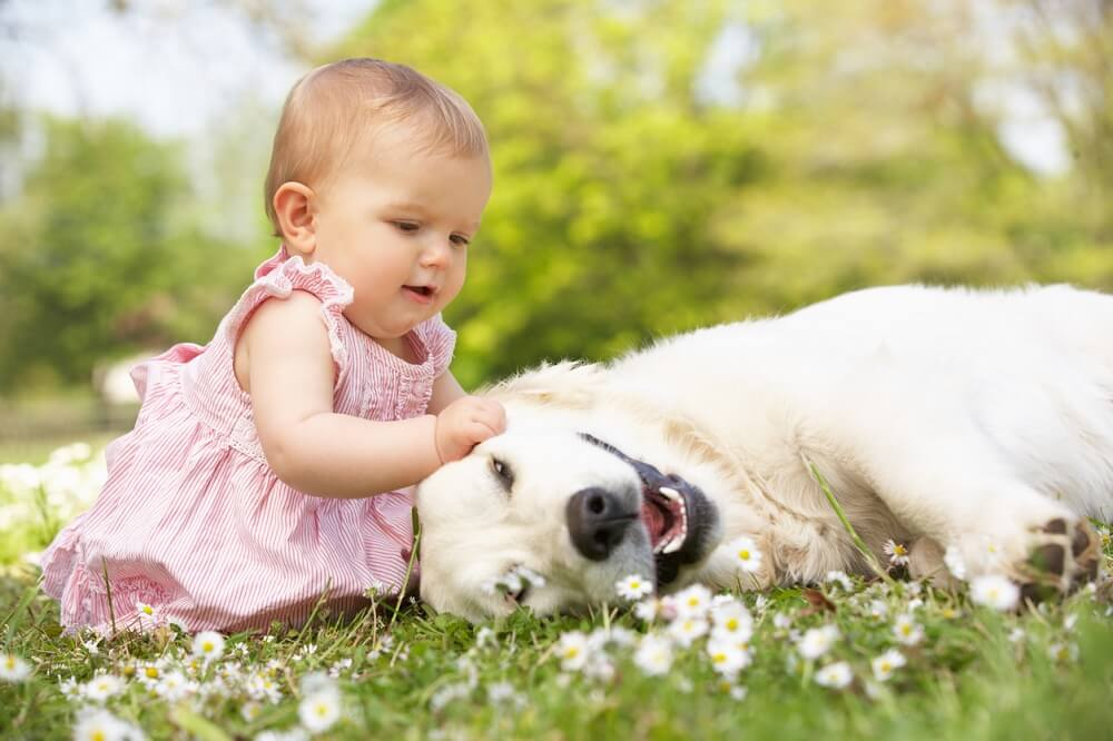 Cruelty-Free Diapers and Other Baby-Care Products for Kind Families