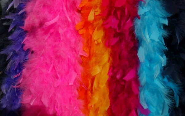 Many colorful feather boas.