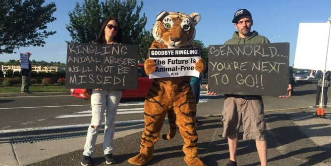 Curtains for Ringling! Animal Advocates Gather Outside Last-Ever Show