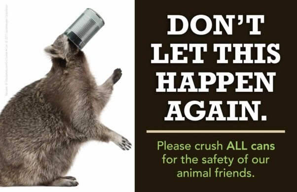 """An ad with a picture of a raccoon with his head stuck in a can - headline reads """"Don't Let This Happen Again."""
