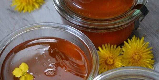 Protect Bees by Making Vegan Dandelion Honey