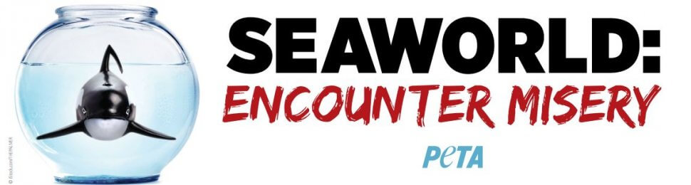 SeaWorld: Encounter Misery