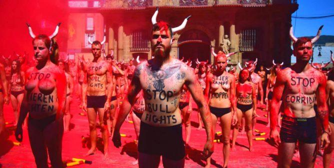 Victory! Spain's Supreme Court Puts an End to Torture of Bulls at 'Toro de la Vega' Festival