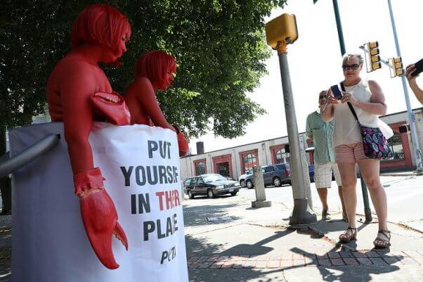 Maine Lobster Festival demo, PETA lobster protest, giant pot demo