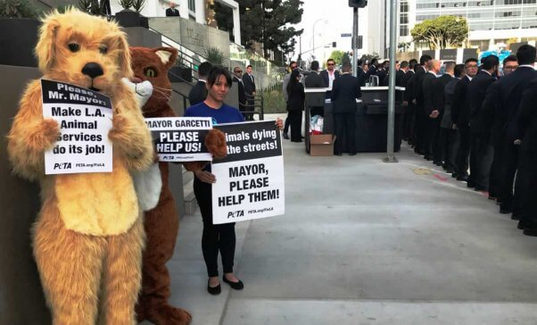 Four people, two in dog and cat costumes, send a message to Mayor Garcetti about LA Animal Services