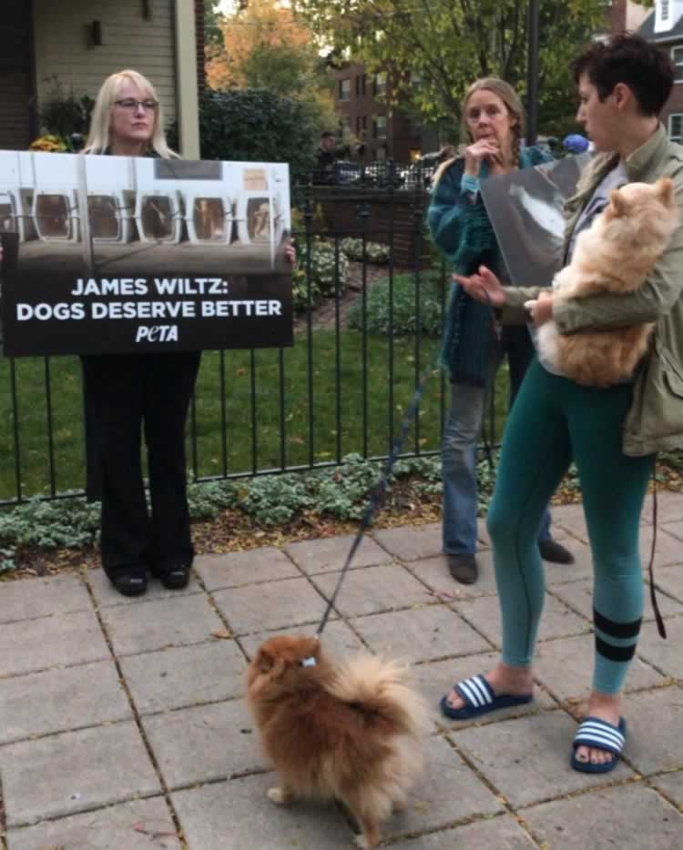 Woman walking dog stops to read protesters' signs