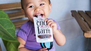 8 Vegan Baby Foods to Nurture the Little Ones