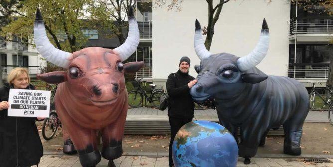 PETA Germany Heats Up the U.N. Climate Change Conference