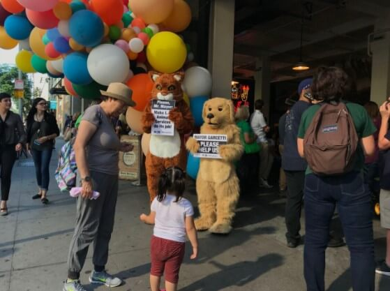 los angeles animal services failures, cat and dog demo, eric garcetti
