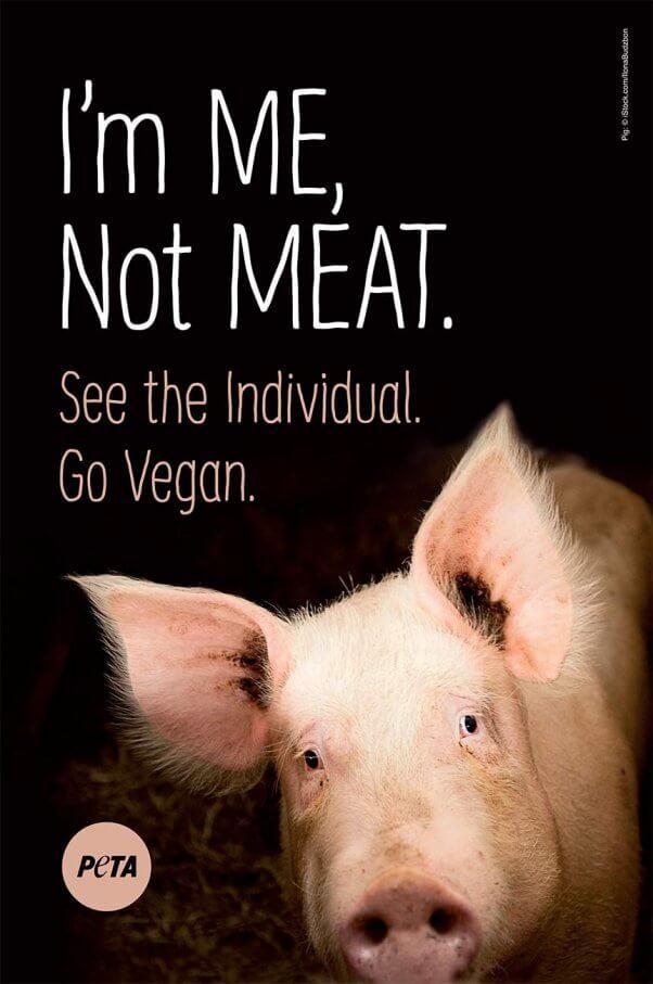 PETA Holiday Ad Blitz: I'm Me, Not Meat Pig Ad