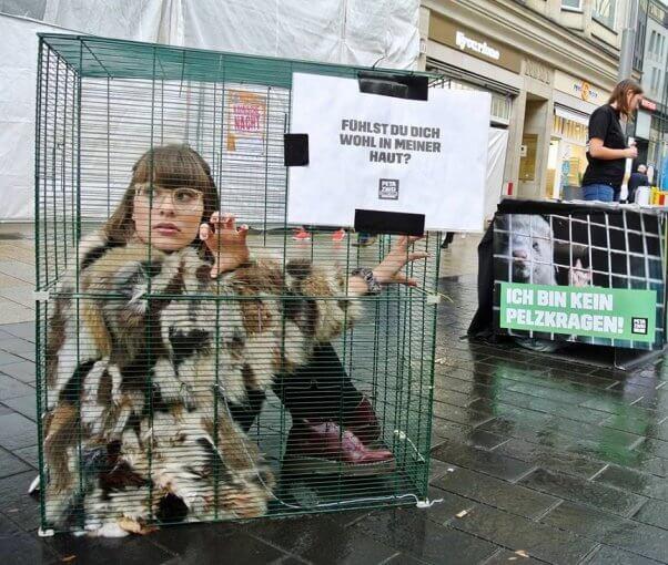 peta germany cage demo, fur