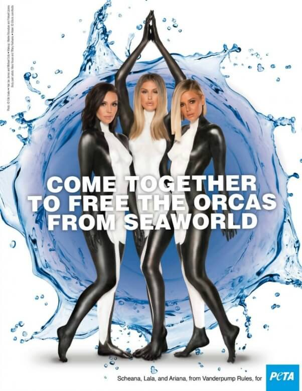 Stars from Vanderpump Rules in a peta ad for the orcas at SeaWorld