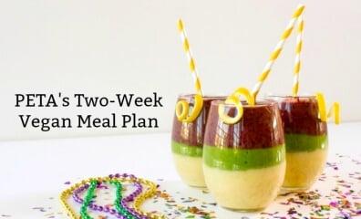 PETA's Two-Week Vegan Meal Plan