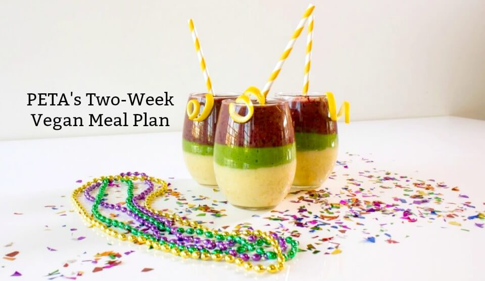 try this deliciously irresistible two week vegan meal plan peta