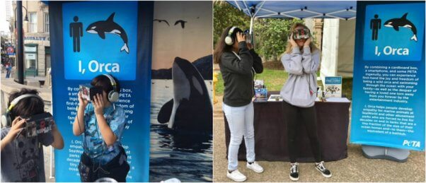 """people try out PETA's """"I, Orca"""" virtual reality experience"""