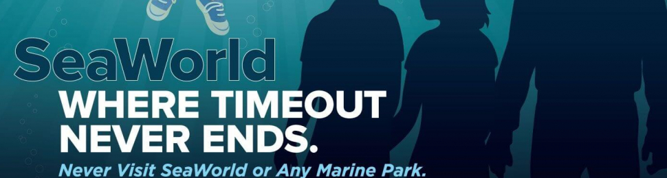 SeaWorld: Where Timeout Never Ends