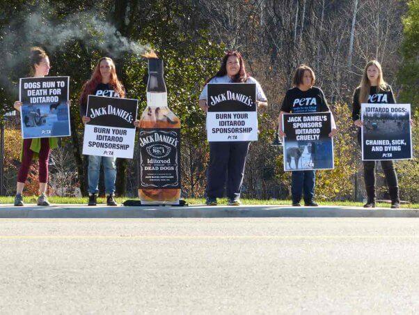PETA activists pressure Jack Daniels to drop its Iditarod sponsorship