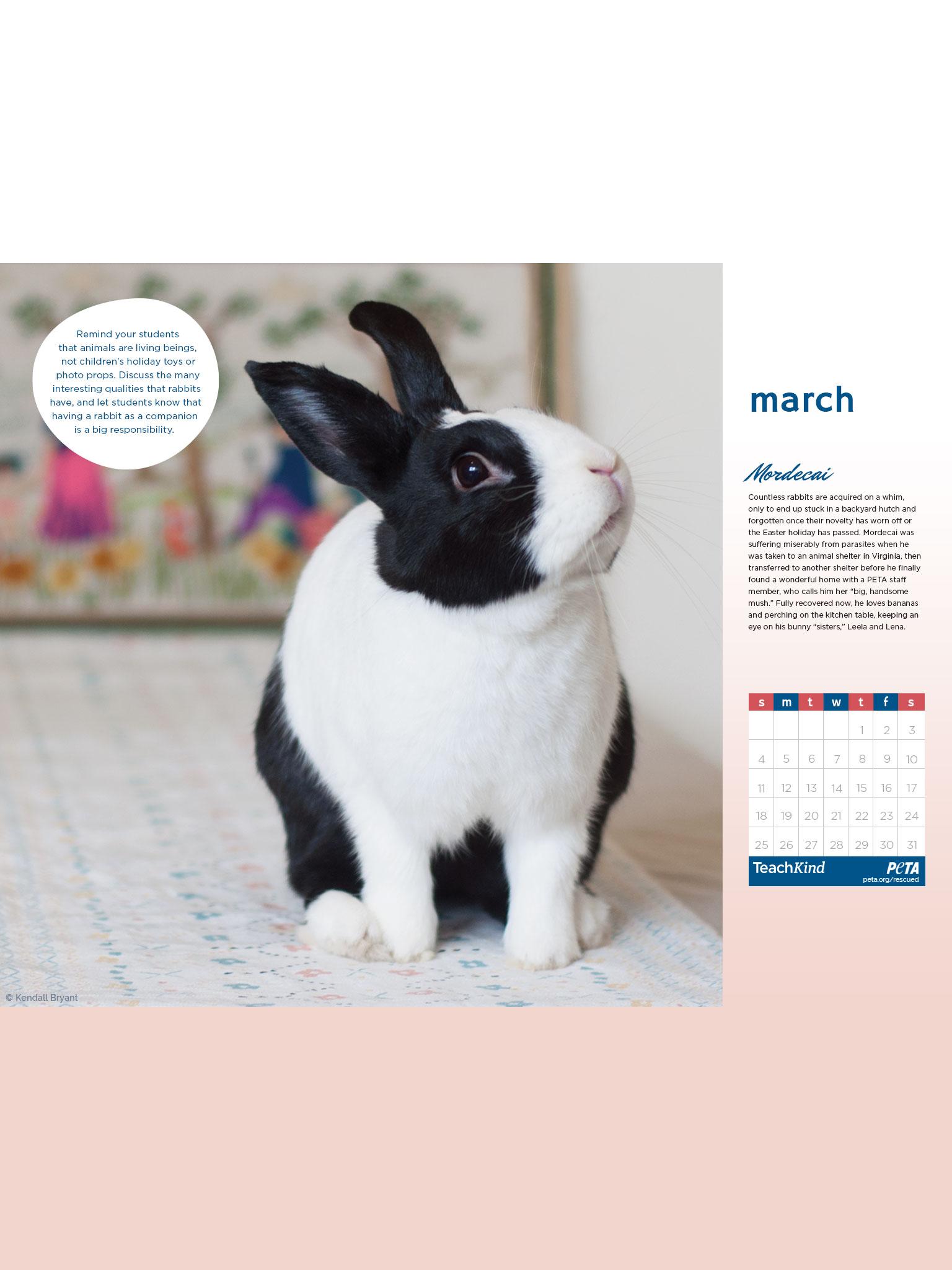 Prime Free 2018 Rescued Desktop Wallpaper Calendars For Download Free Architecture Designs Xoliawazosbritishbridgeorg