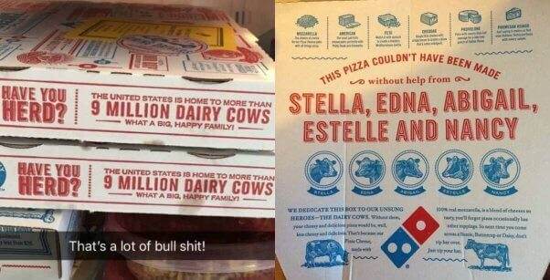 undeniably dairy dominos boxes