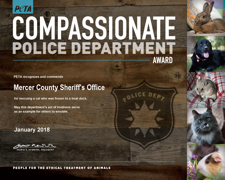 Sheriff's Office Nabs PETA Award for Saving Cat Frozen to