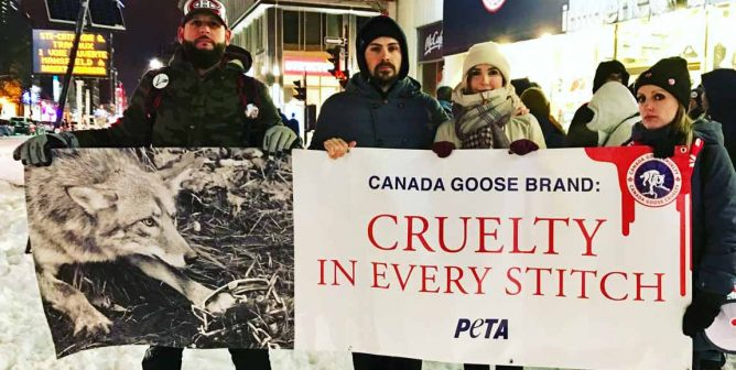 100 Warmhearted People Brave the Cold to Expose Canada Goose's Cruelty