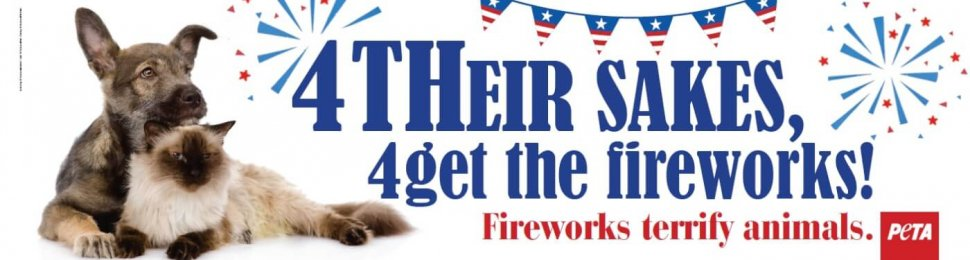 4Get the Fireworks!