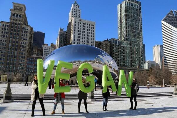 vegan letters demo, chicago bean