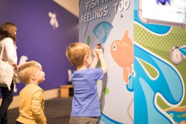 """Children interacting with """"Fish Have Feelings, Too"""" display in TeachKind's Destination: Empathy exhibit"""