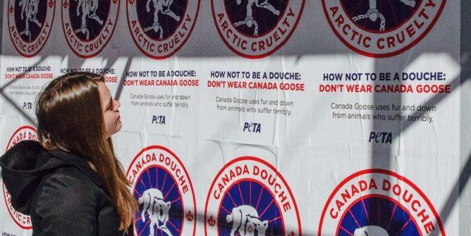 PETA's 'Canada Douche' Guerilla Marketing Takes Down Canada Goose