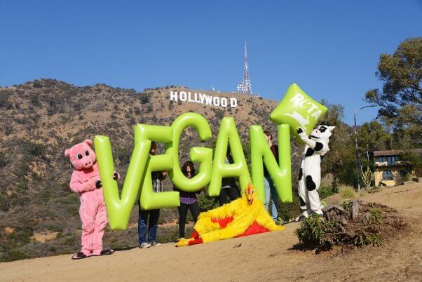 vegan letters demo, hollywood sign, la