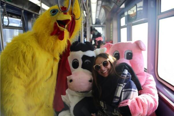 cow, chicken, pig demos