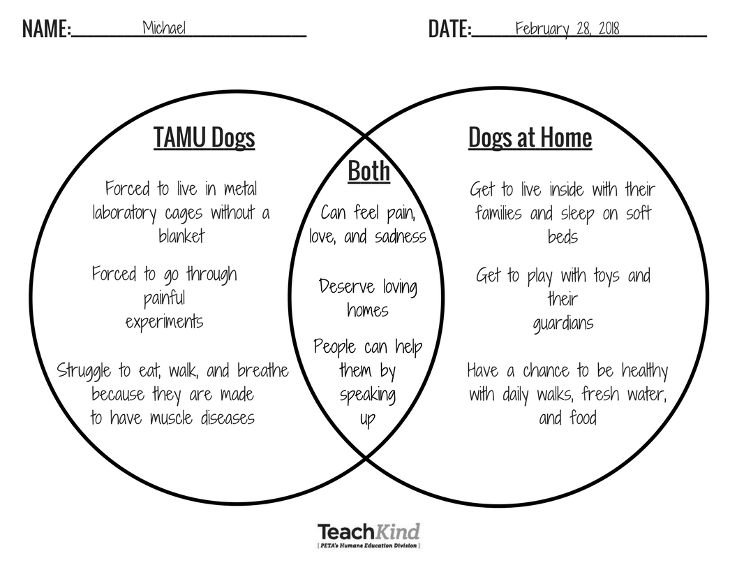 Save dogs with these classroom activities peta create a t chart or venn diagram to compare and contrast their experiences pooptronica Gallery