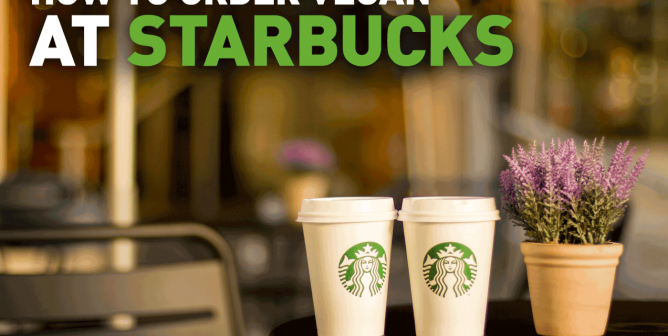 Christmas Starbucks Drinks 2019.Your Guide To Vegan Starbucks Drinks March 2019 Peta