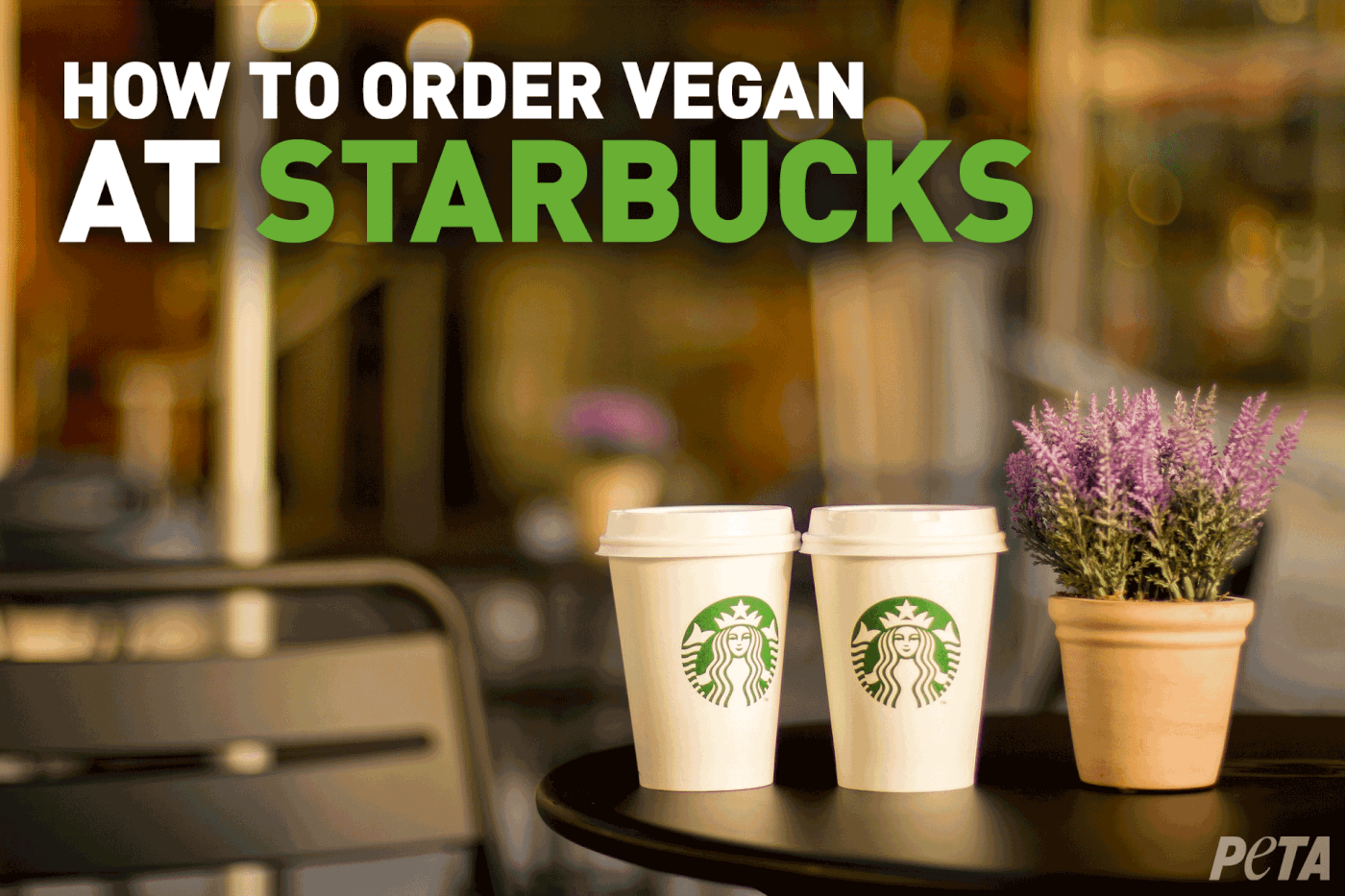 Your Guide To Vegan Starbucks Drinks March 2019 Peta