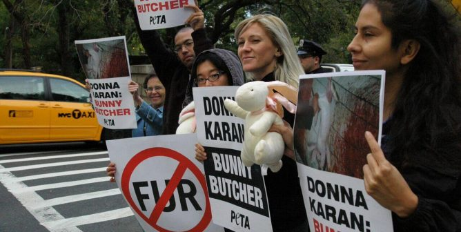Breaking News: After Decades of PETA Pressure, Donna Karan Is Going Fur-Free