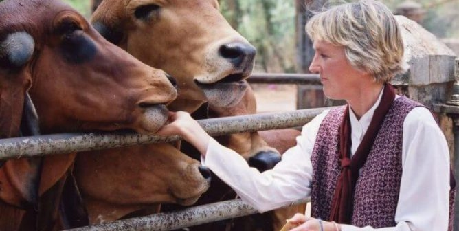 Activities: Women in Leadership and Animal Rights