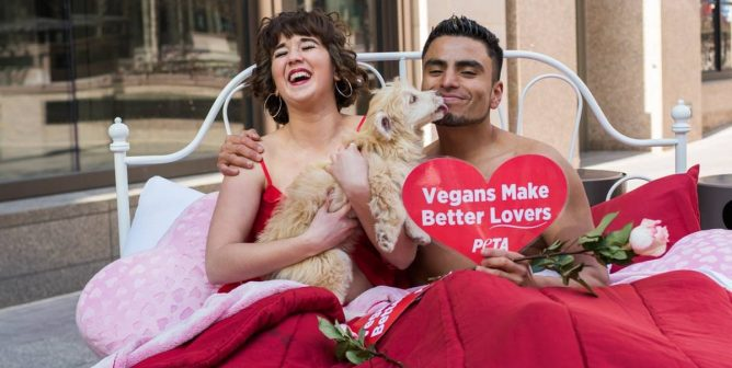PETA's February Was Proof That Love (for Animals) Is a Battlefield