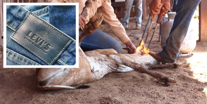 Levi's: Ditch the Leather Patch