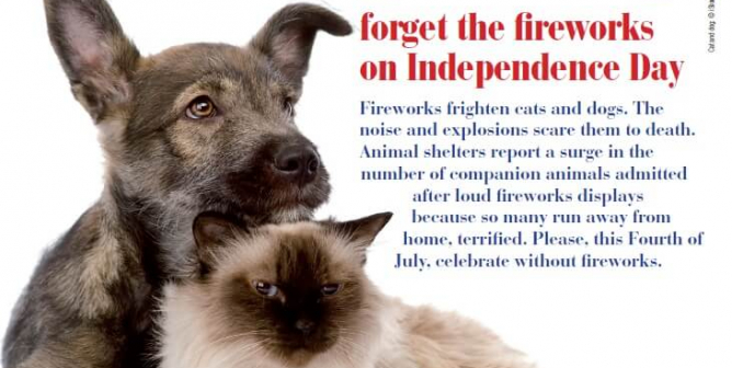 Forget the Fireworks on Independence Day