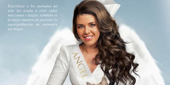 """Alicia Machado: Sé un """"ángel"""" para los animales"""