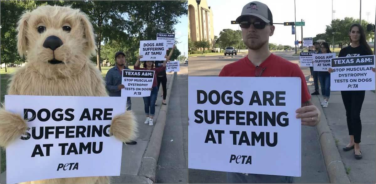 PETA protesting at Texas A&M's graduation ceremony 2018