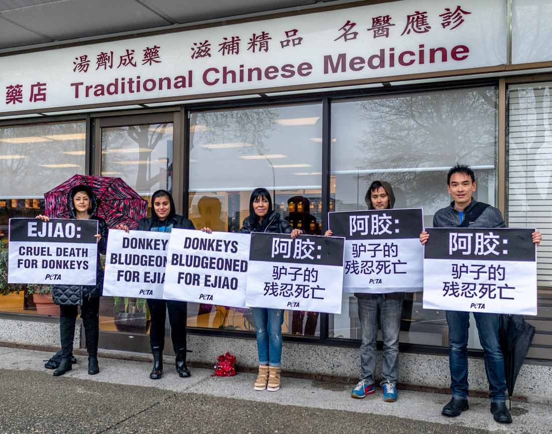 PETA ejiao protest outside a market in Vancouver