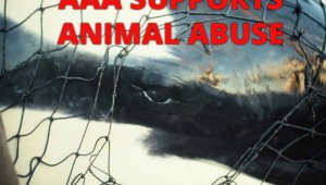 AAA Needs to Stop Promoting SeaWorld NOW