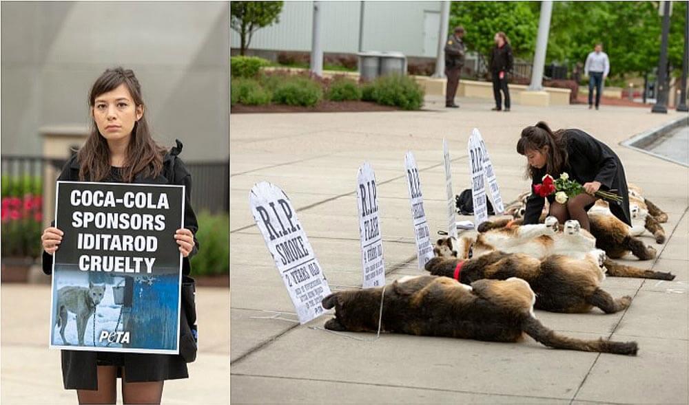 PETA protests Coca Cola's sponsorship of the Iditarod